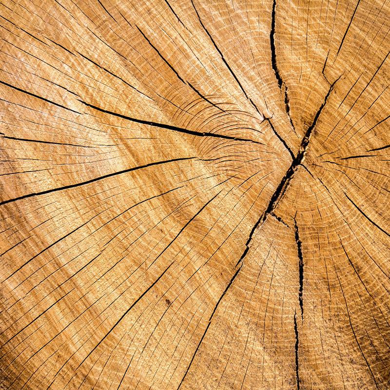 Holz für Frescobol